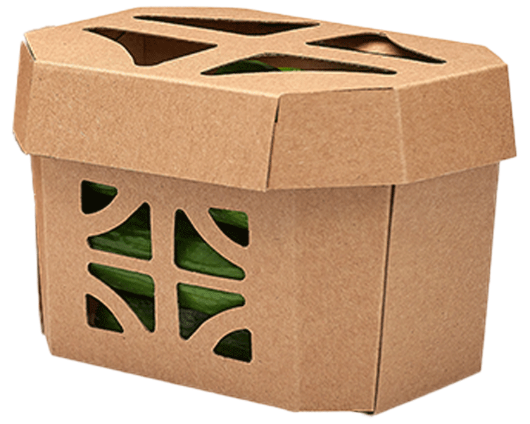 Materialien Hartpapier Lebensmittelverpackungen